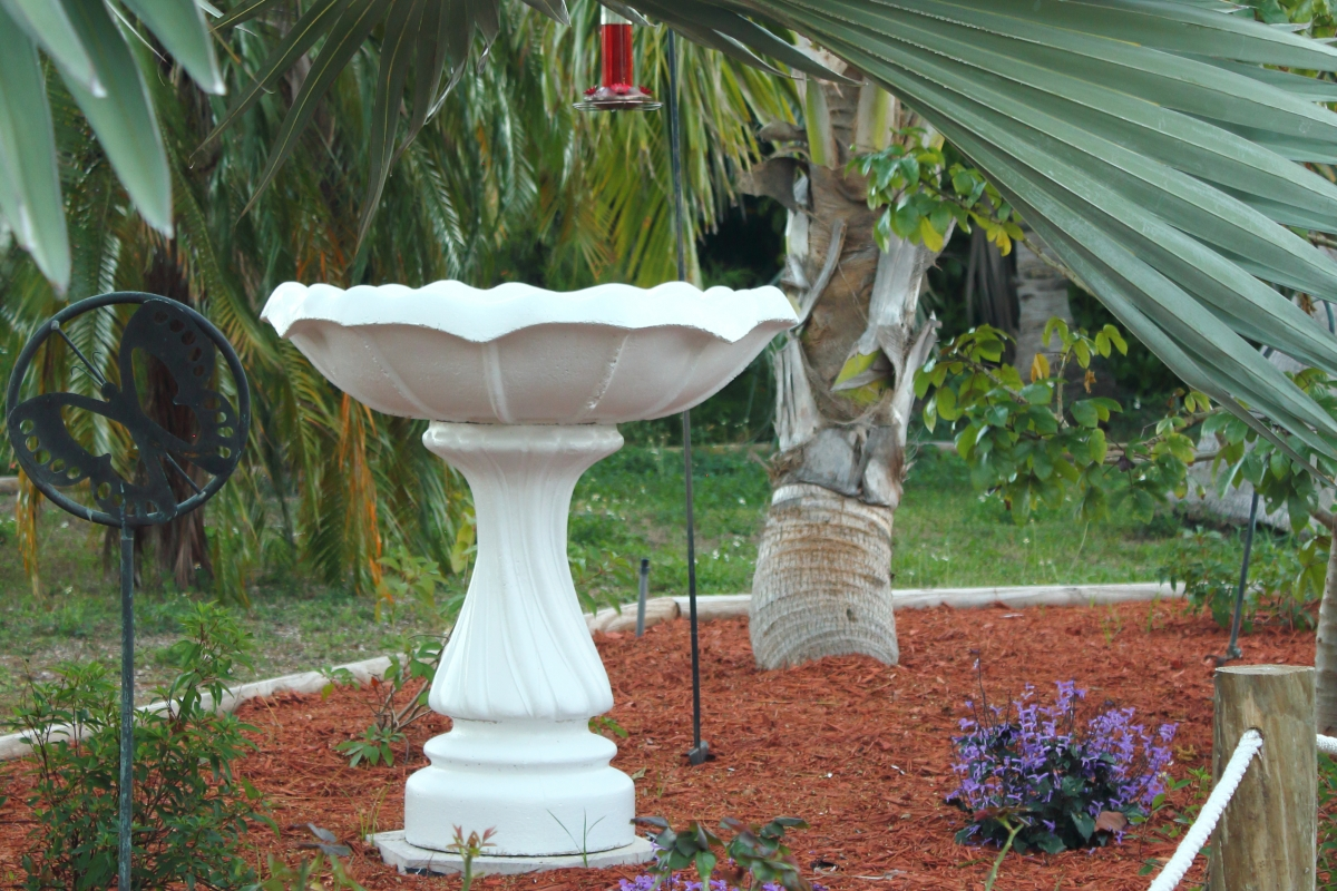 Humming Bird Planter at the Gulf View Waterfront Resort Marathon Florida Keys