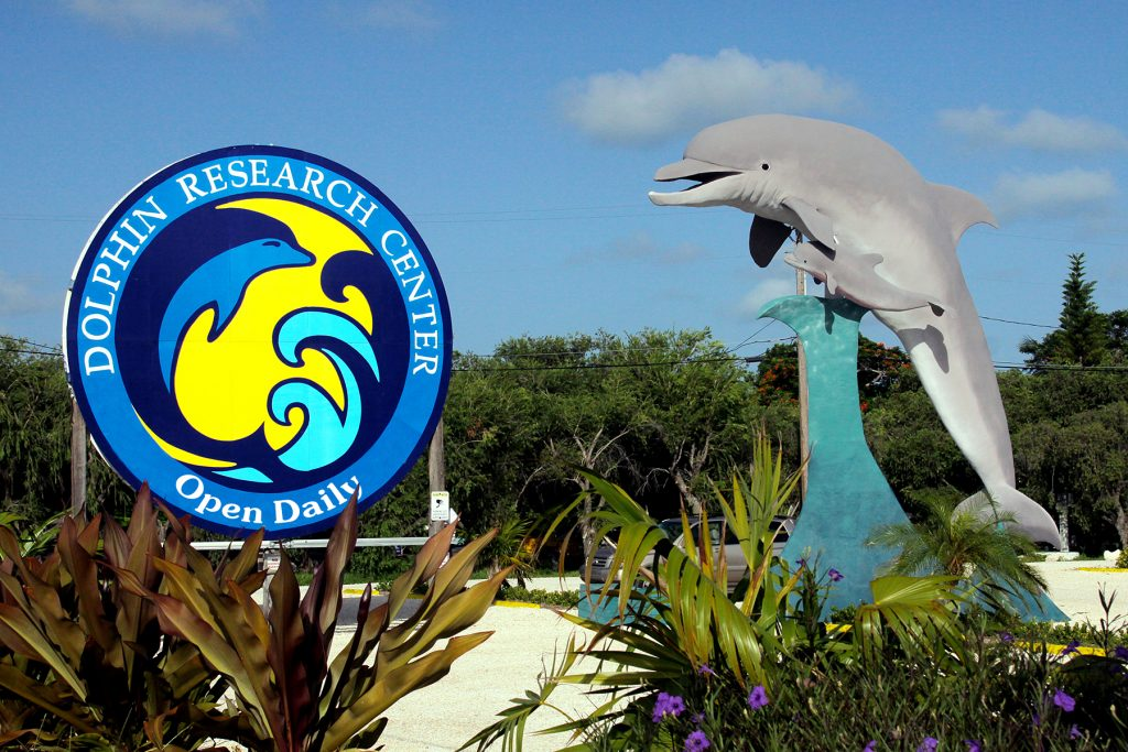 Dolphin Research Center